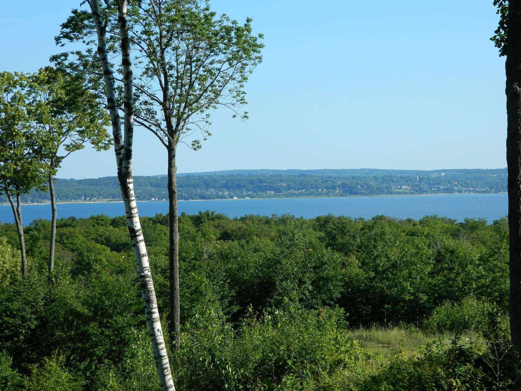 土地 為 出售 在 Broken Ridge Lot 4 8156 East Ridge Harbor Springs, 密歇根州, 49740 美國