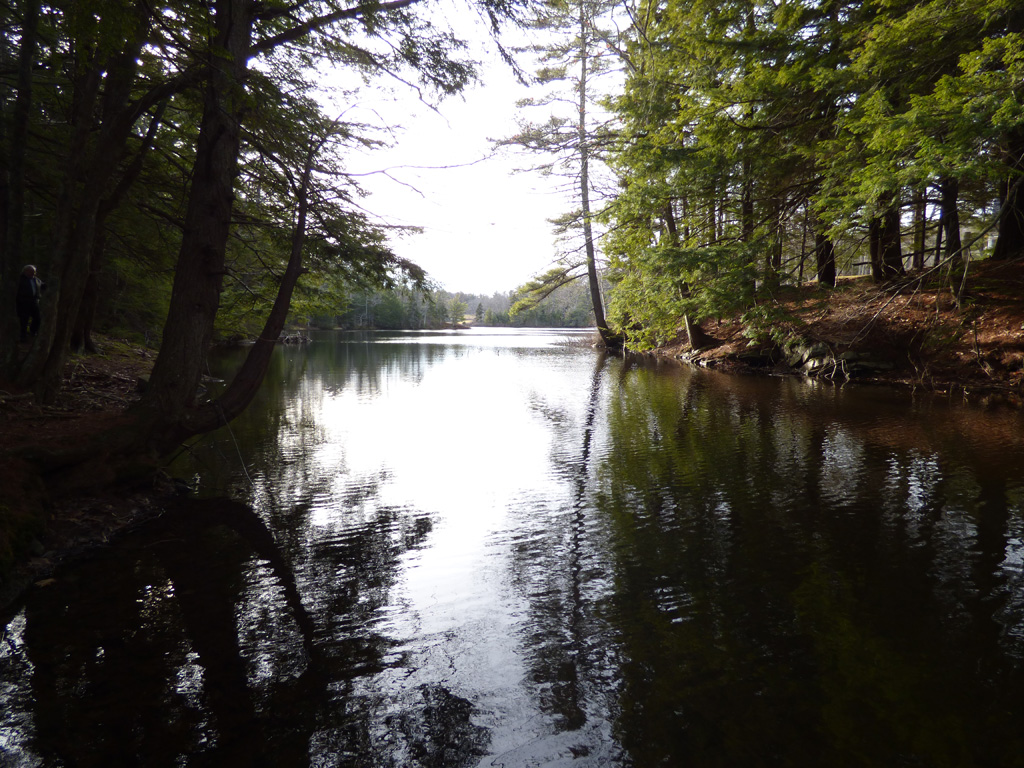 Land for Sale at Middle Road, Boothbay Harbor 0 Middle Rd Boothbay Harbor, Maine, 04538 United States