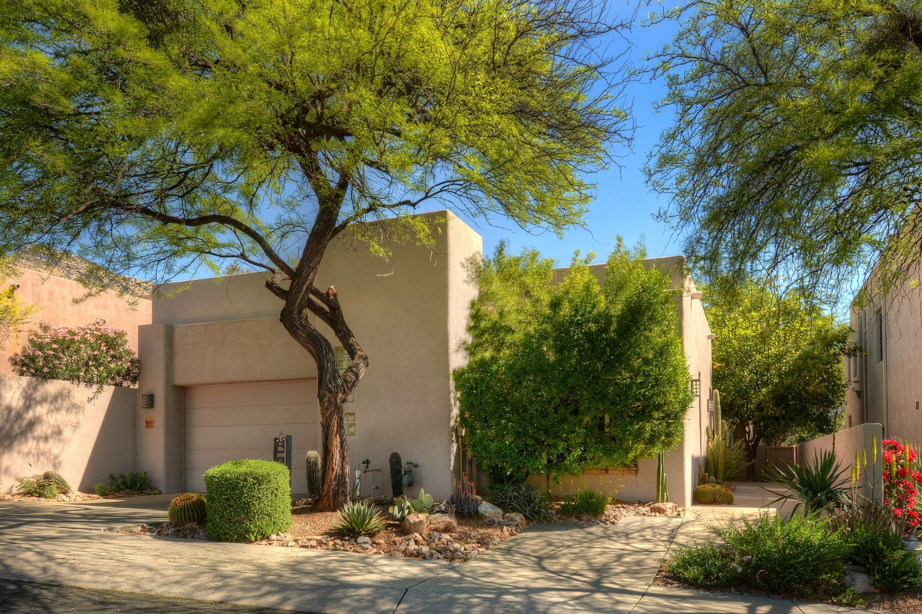 Частный односемейный дом для того Продажа на Sensational one level custom home 6228 N Ventana View Place Tucson, Аризона, 85750 Соединенные Штаты