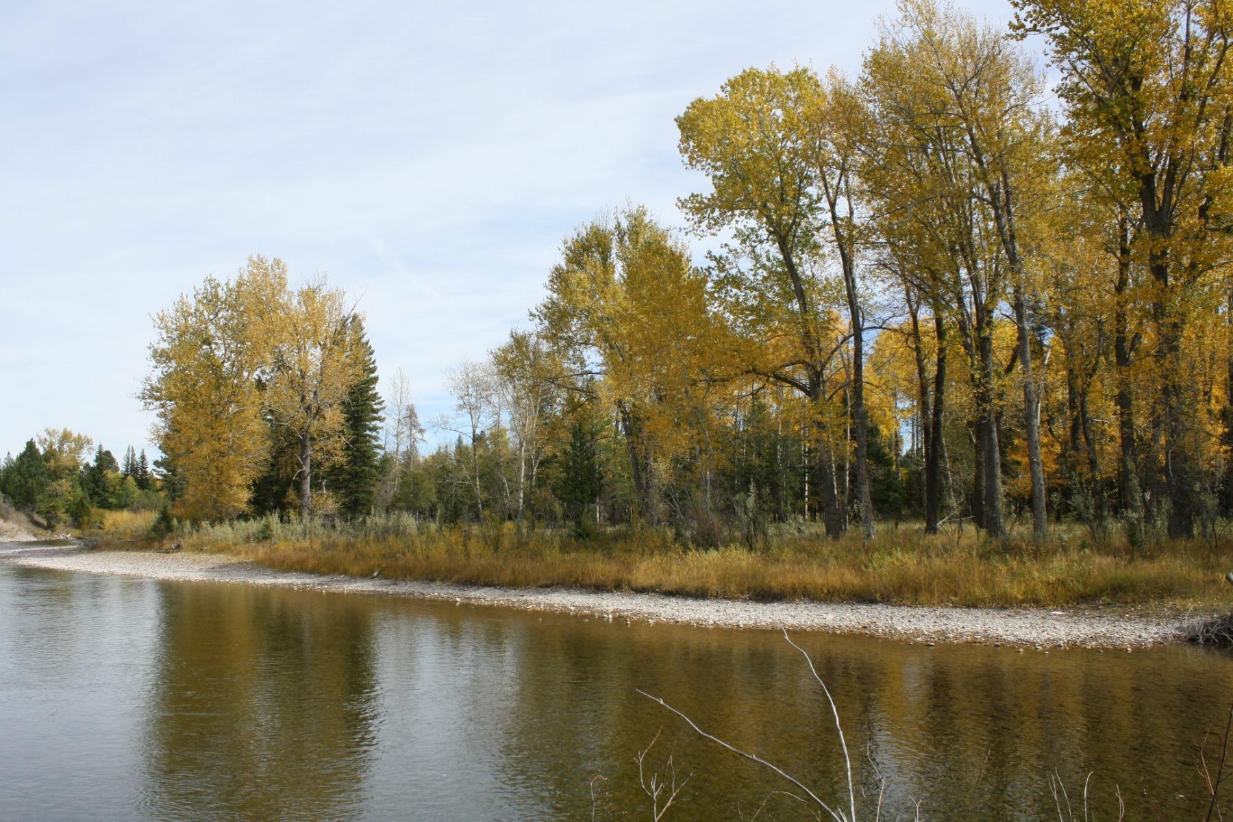 土地 为 销售 在 4727 W. Highway 200 林肯, 蒙大拿州, 59639 美国