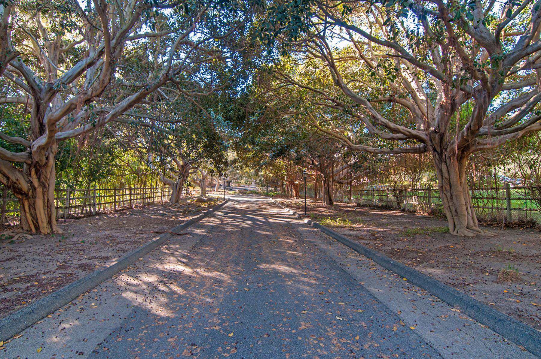 단독 가정 주택 용 매매 에 15350 El Camino Real Rancho Santa Fe, 캘리포니아, 92067 미국