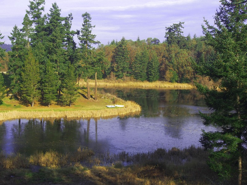 Property For Sale at Lake View Acreage