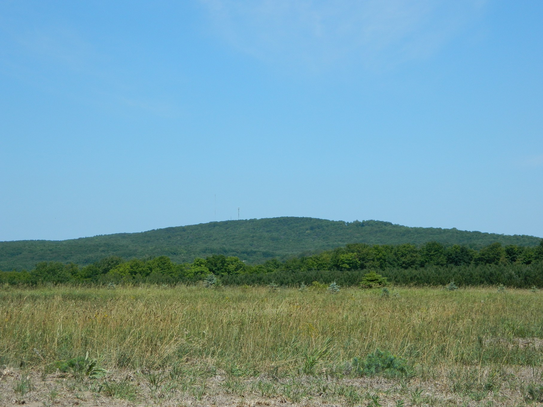 sales property at Broken Ridge Lot 1