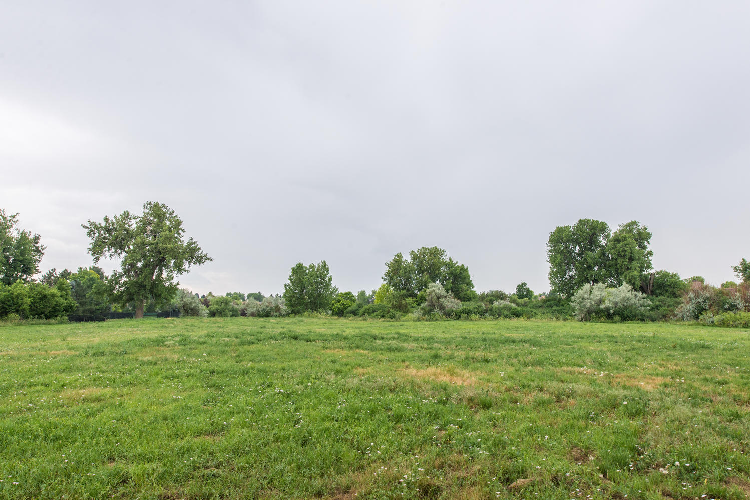 Additional photo for property listing at Welcome to the Best Opportunity to Build 2 Ravenswood Rd Cherry Hills Village, Colorado 80113 United States