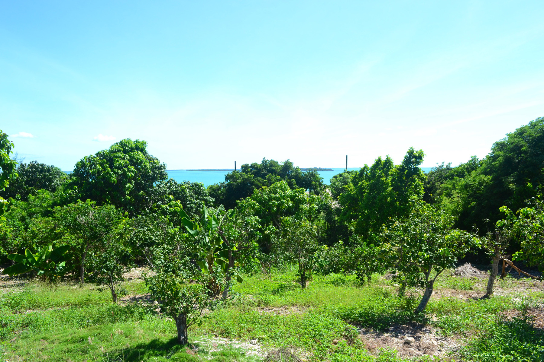 Land for Sale at Russell Island Fruit Lot with water views Spanish Wells, Eleuthera Bahamas