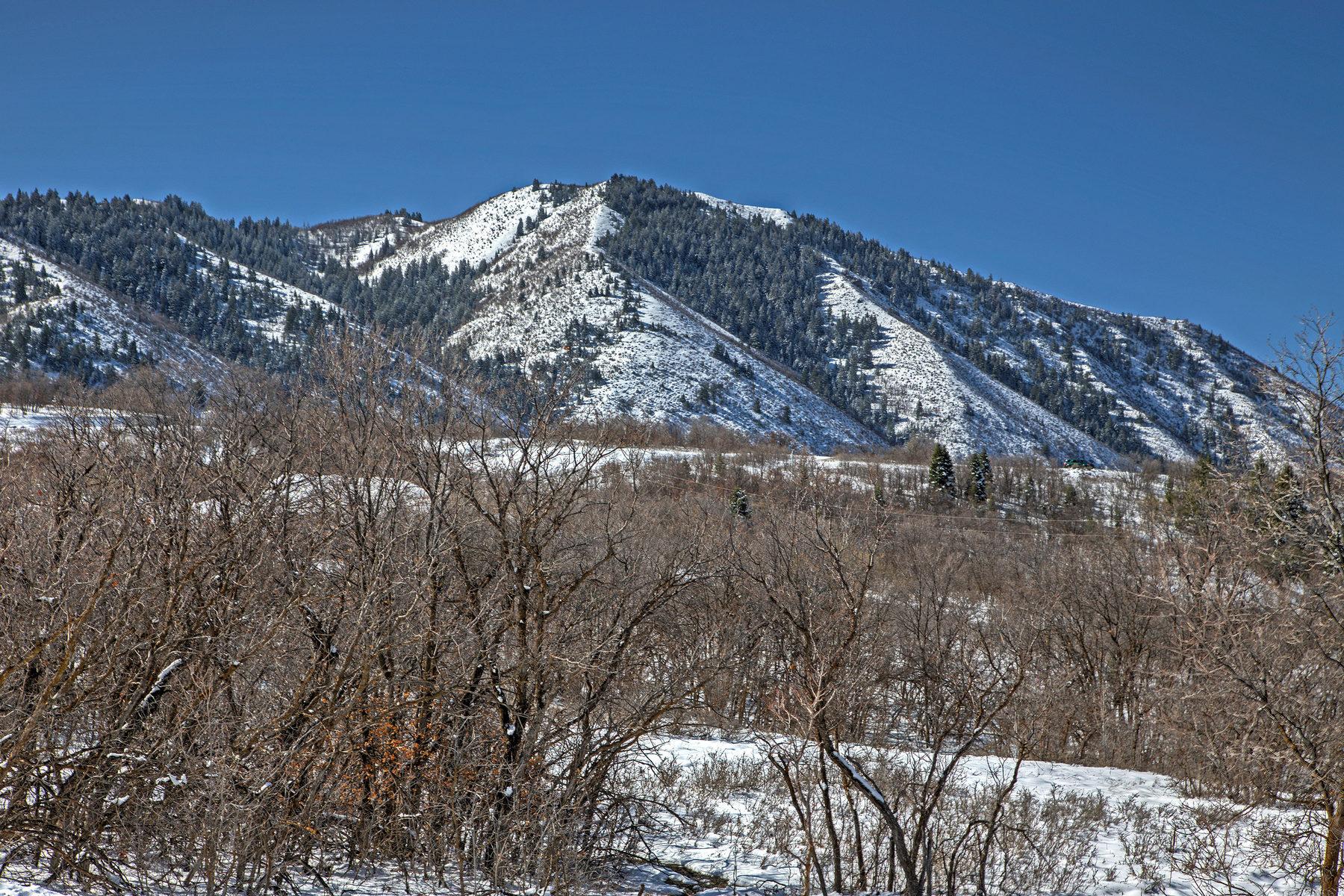 Terreno per Vendita alle ore Prime Lot in Summit Creek 912 S Summit Creek Dr Lot 48 Woodland Hills, Utah, 84653 Stati Uniti