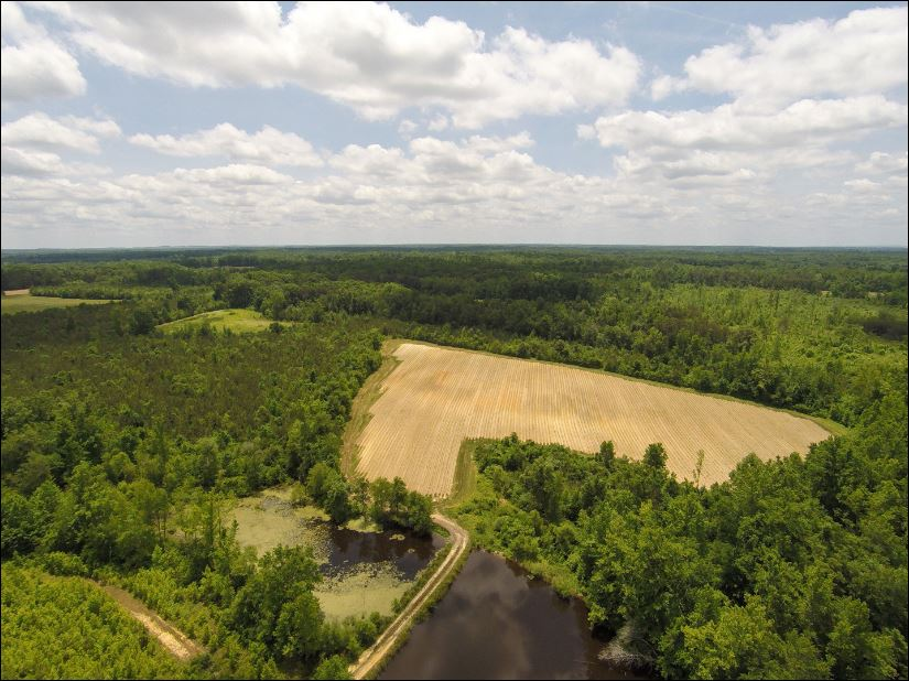 Land for Sale at Walker Farm 6025 Pentecost Road Cedar Grove, North Carolina 27231 United StatesIn/Around: Raleigh, Durham, Cary, Chapel Hill