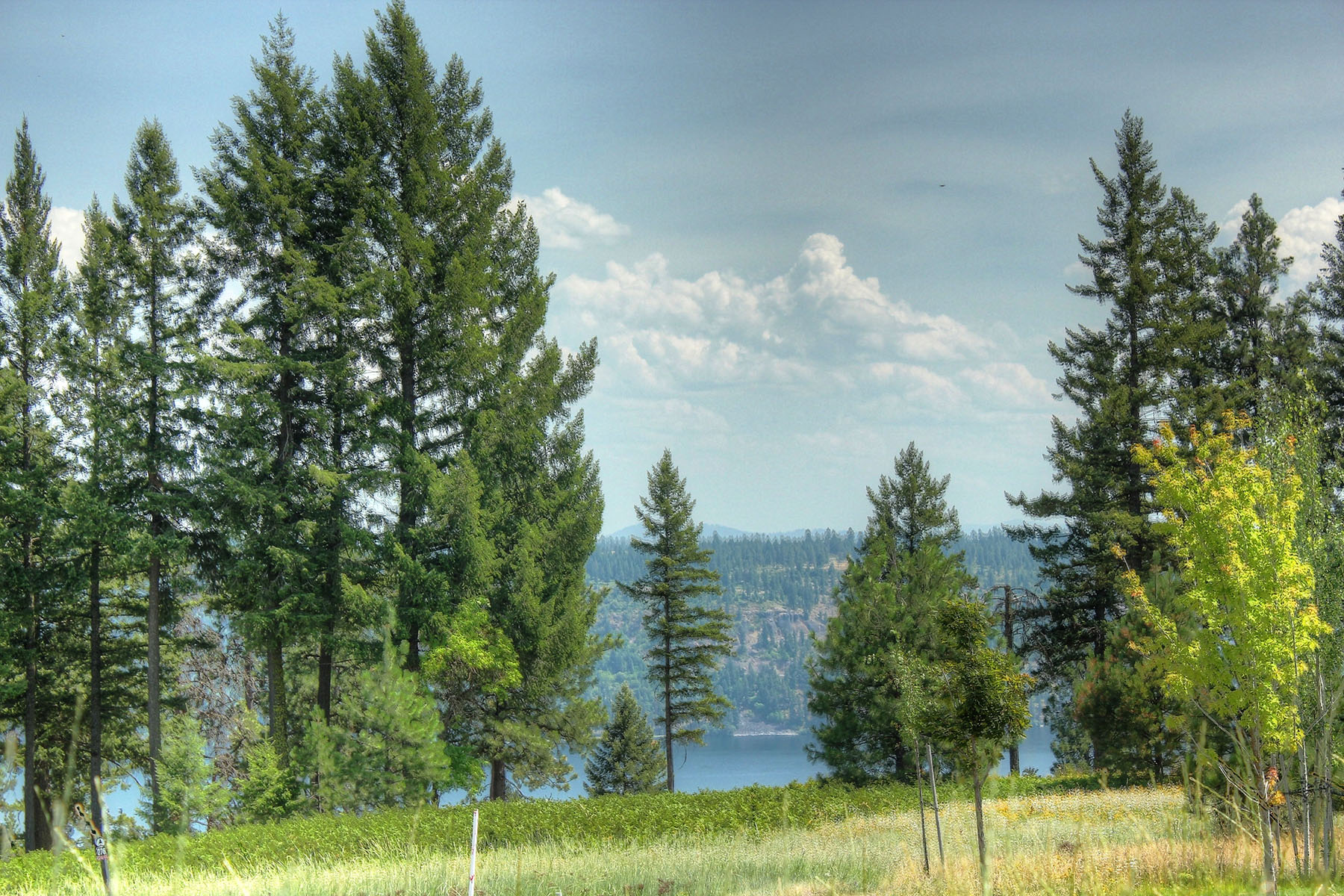 Land for Sale at Lake, Golf & Mountain View Parcel 278 Magma Coeur D Alene, Idaho 83814 United States