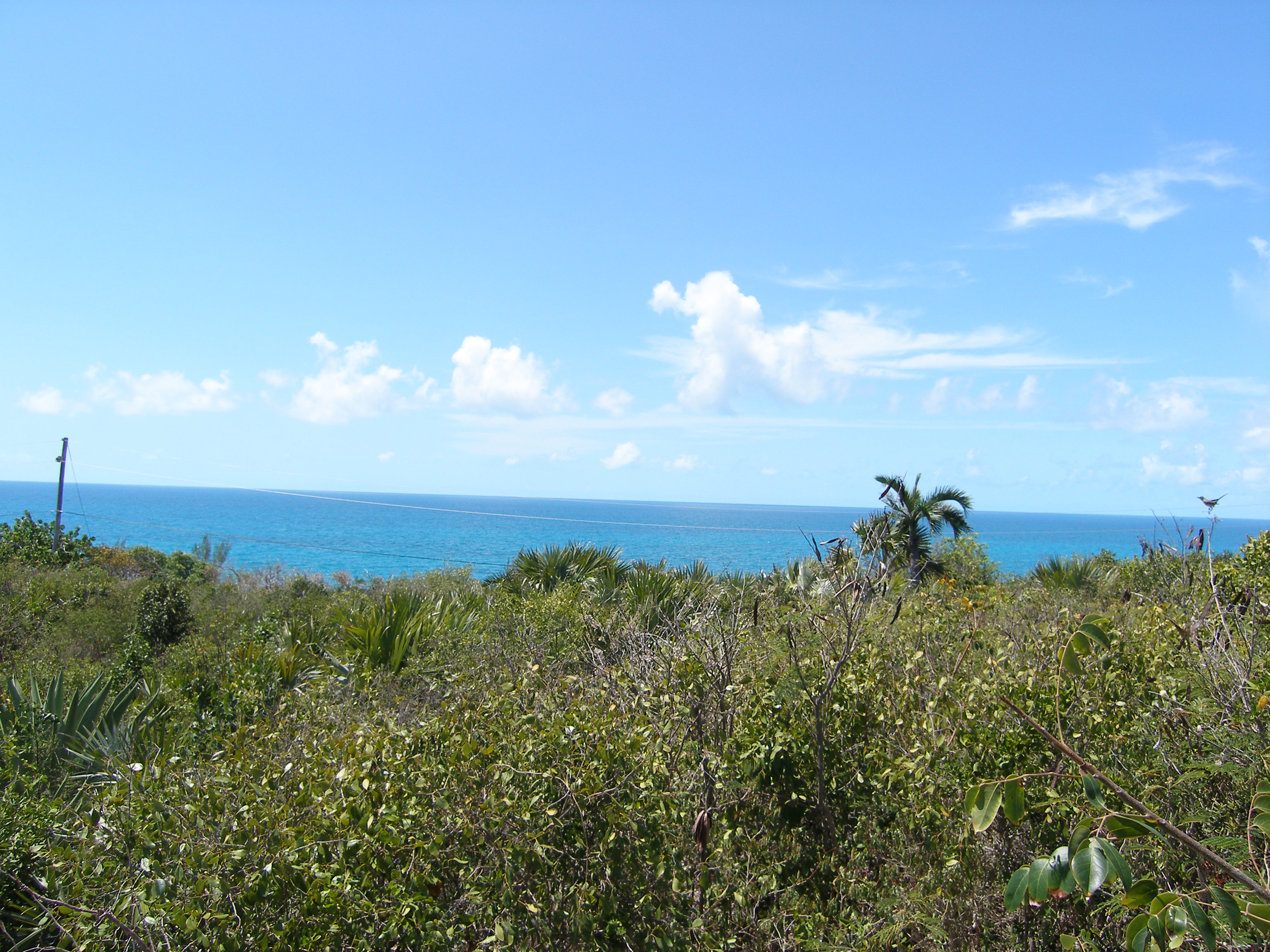 Additional photo for property listing at Lots 5 & 6, Block 14, Section A Rainbow Bay, Eleuthera Bahamas