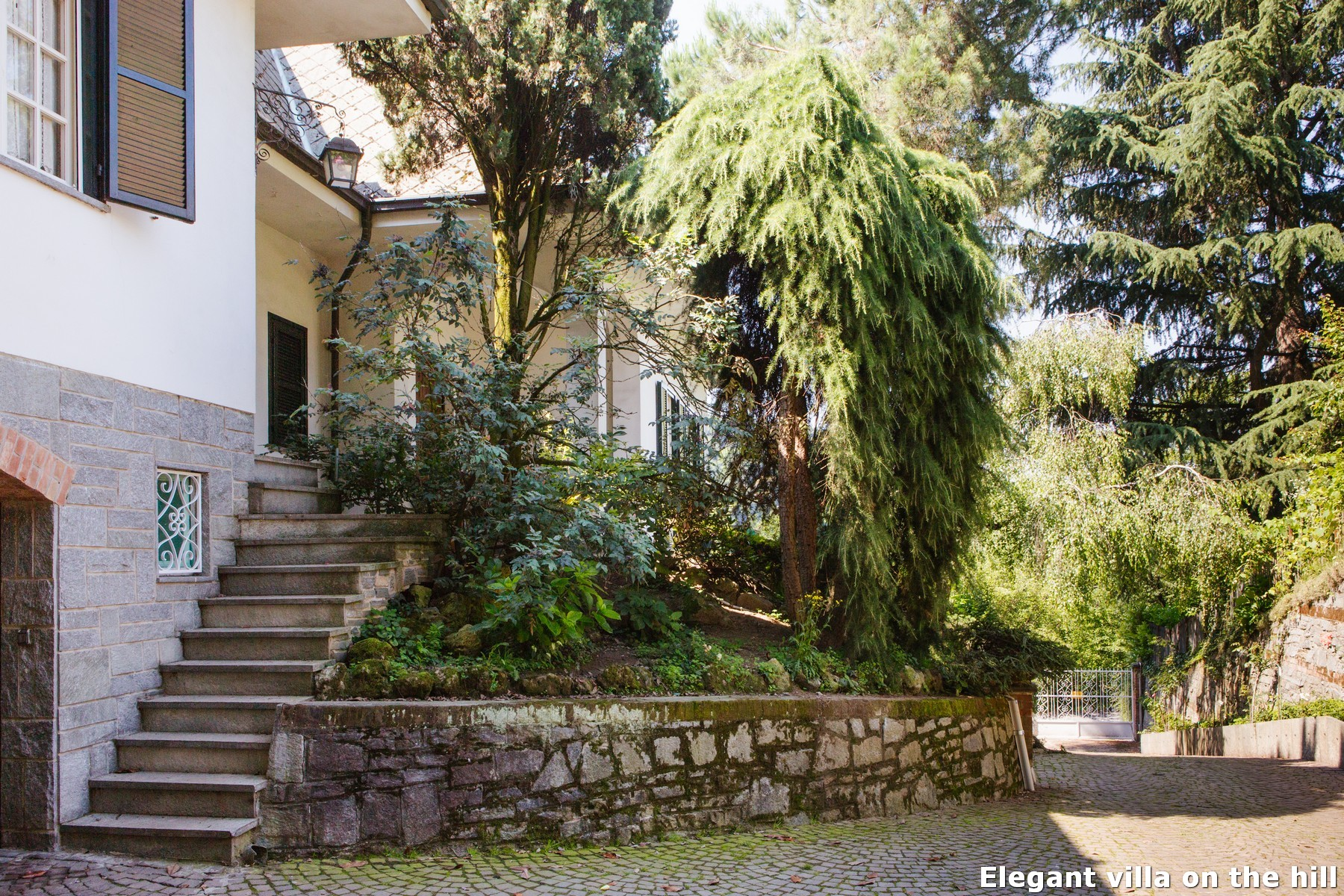 Additional photo for property listing at Elegant villa on the hill Viale XXV Aprile Torino, Turin 10133 Italy