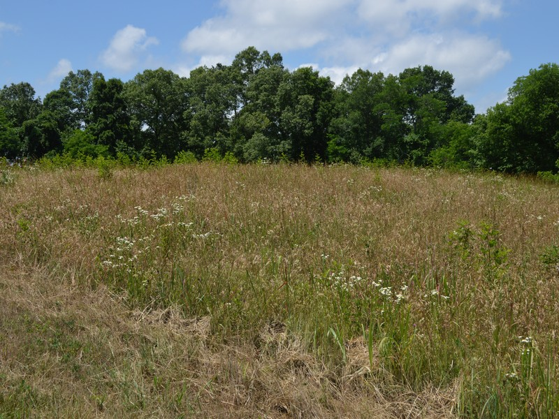 Land for Sale at River Ranch Lot 73R River Drive Blaine, Tennessee 37709 United States
