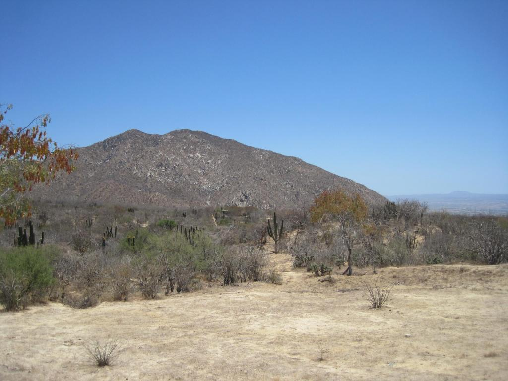 Land for Sale at Rancho La Soledad San Jose Del Cabo, Baja California Sur Mexico