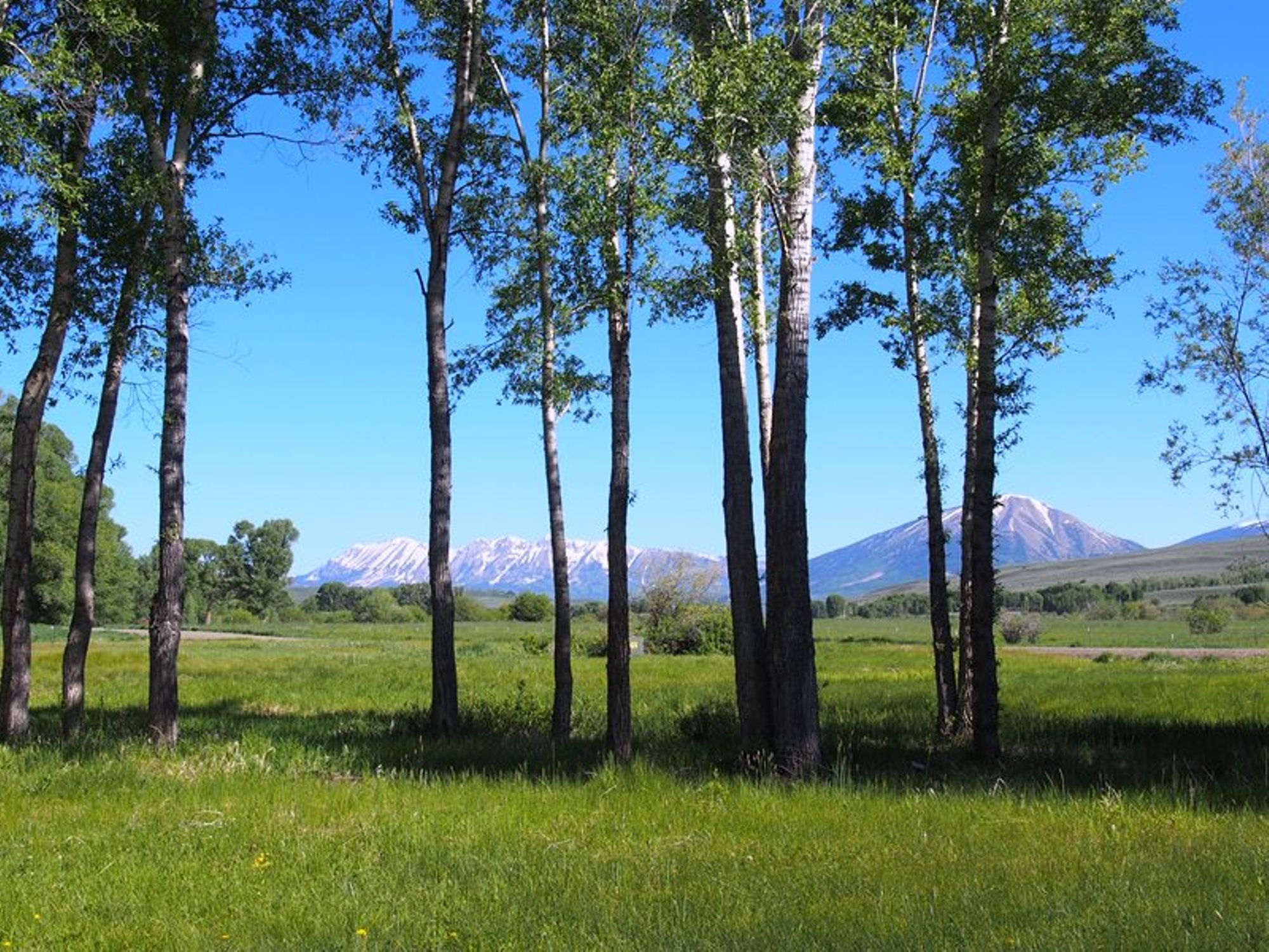 Land for Sale at Most Amazing Lot on Ranch TBD Eagle Creek Road Gunnison, Colorado 81230 United States