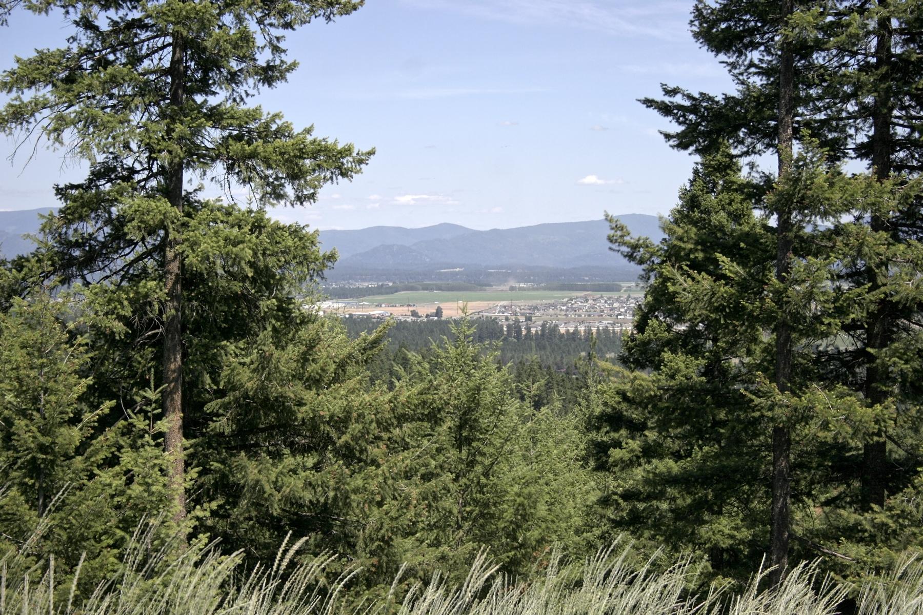 Terreno por un Venta en Wild Ridge Estates NNA Wesley Court Rathdrum, Idaho, 83858 Estados Unidos