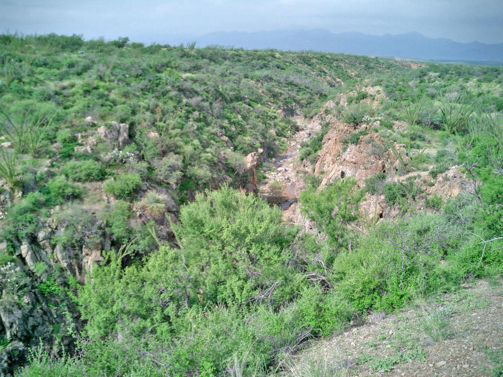 Terrain pour l Vente à Foothills of the Santa Rita Mountains TBD Bull Spring Rd Tubac, Arizona, 85646 États-Unis