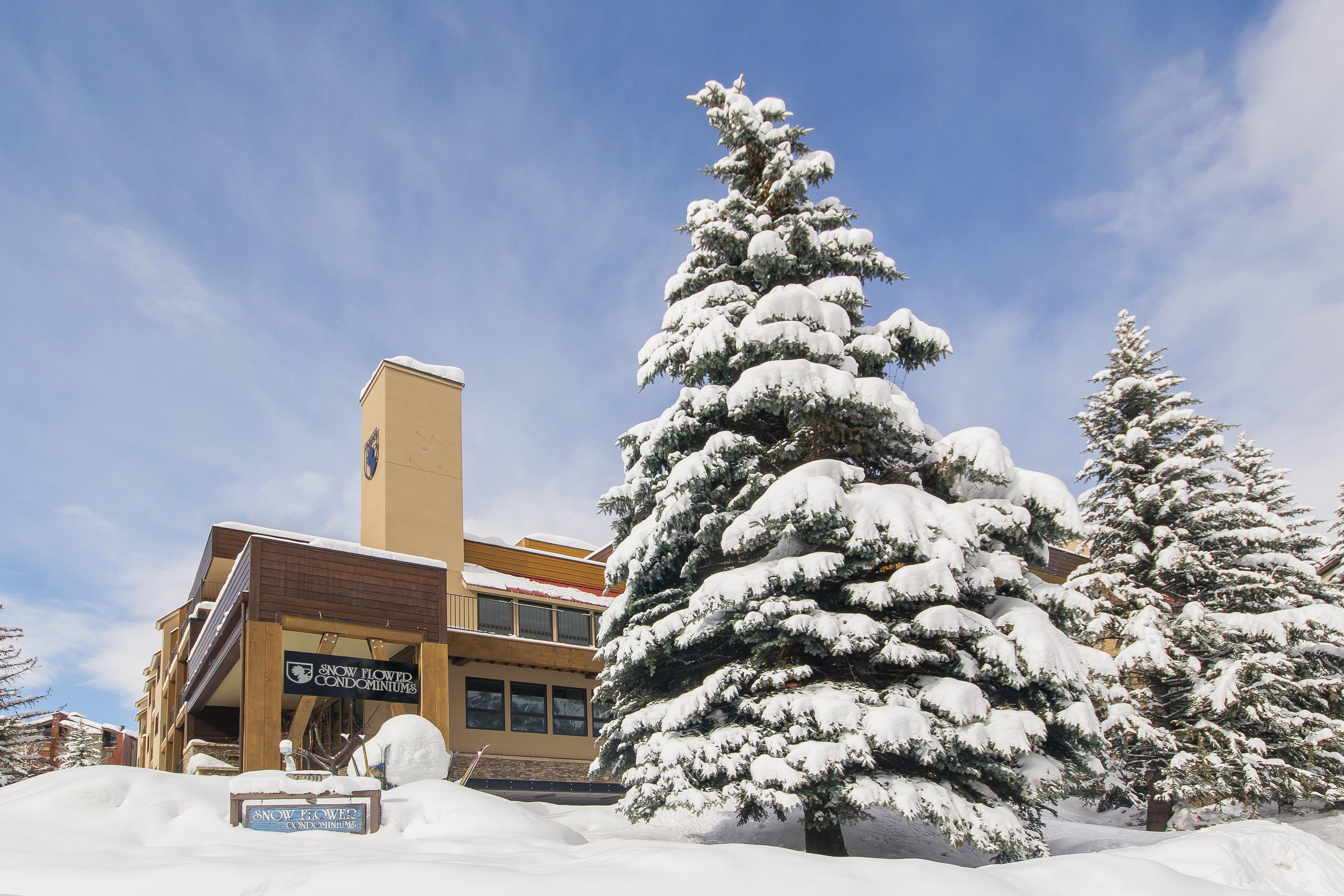 Condominium for Sale at Base Area Ski Condo @ Snowflower 2200 Apres Ski Way #311 Steamboat Springs, Colorado 80487 United States