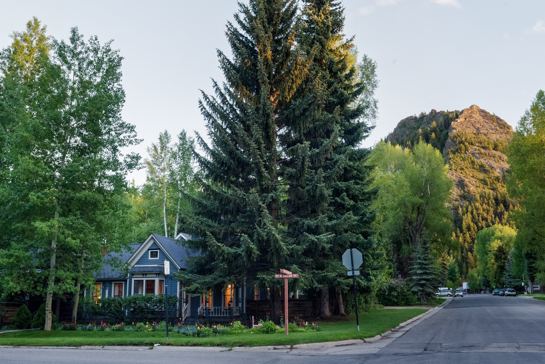 Single Family Home for Sale at West End Jewel 533 W. Hallam, LLC West End, Aspen, Colorado 81611 United States