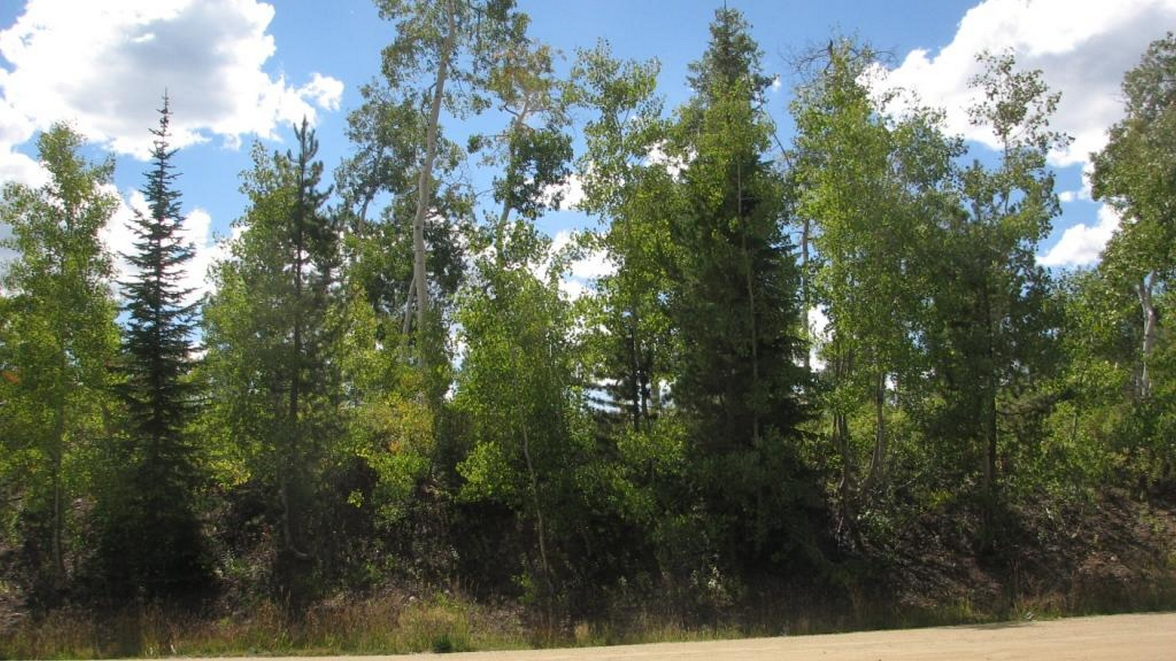 Land for Sale at Views of the Continental Divide 57930 Longfellow Way Clark, Colorado, 80428 United States