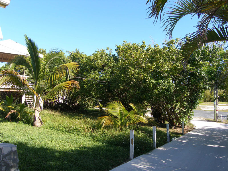 Land for Sale at Park Place Elbow Cay Hope Town, Abaco Bahamas