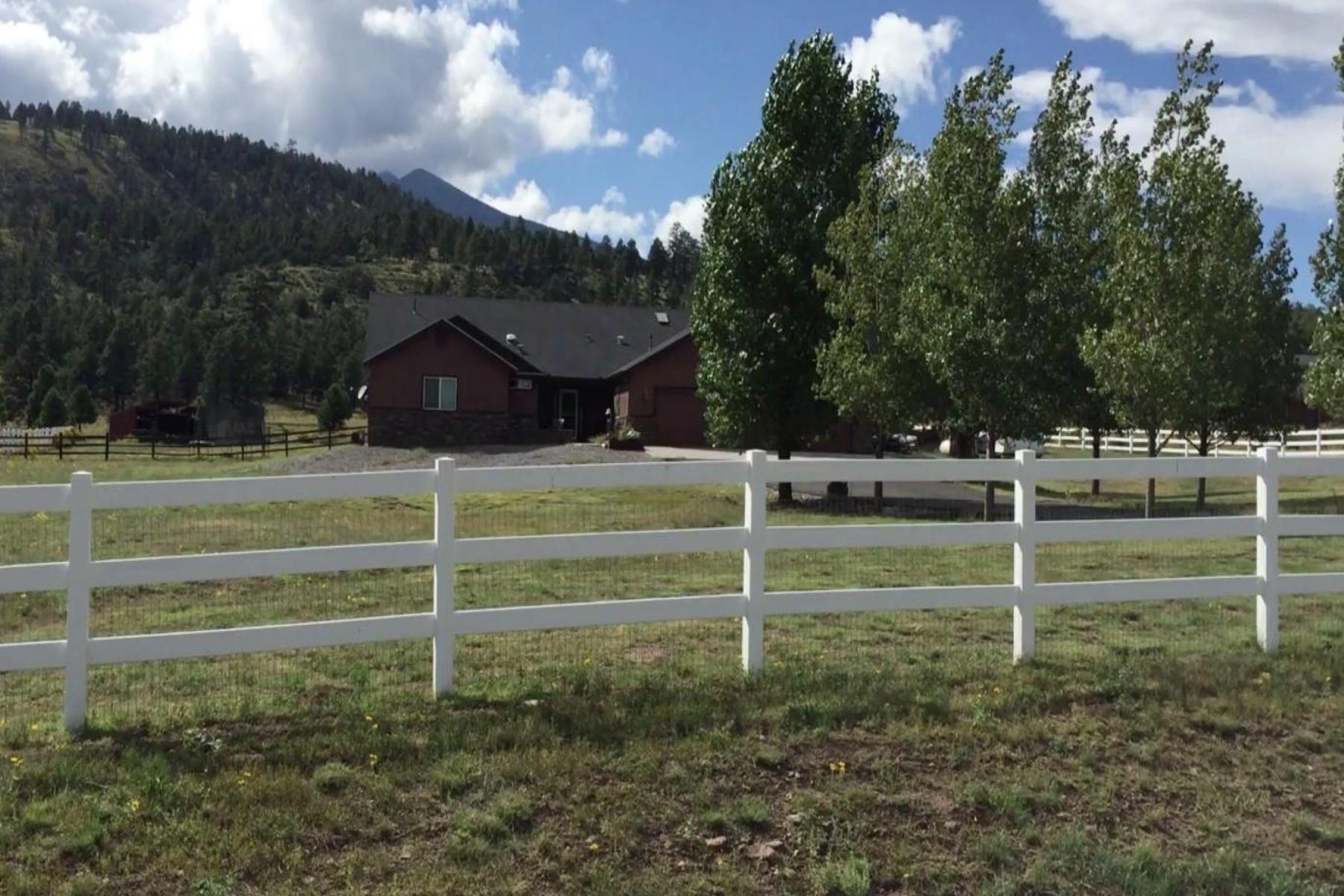 Einfamilienhaus für Verkauf beim Amazing single level ranch style home 14240 Ventoso Ct Flagstaff, Arizona, 86004 Vereinigte Staaten