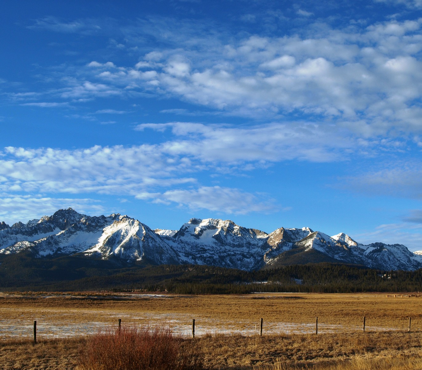 Additional photo for property listing at Exceptional Riverfront Lot State Highway 75 Stanley, Idaho 83278 États-Unis