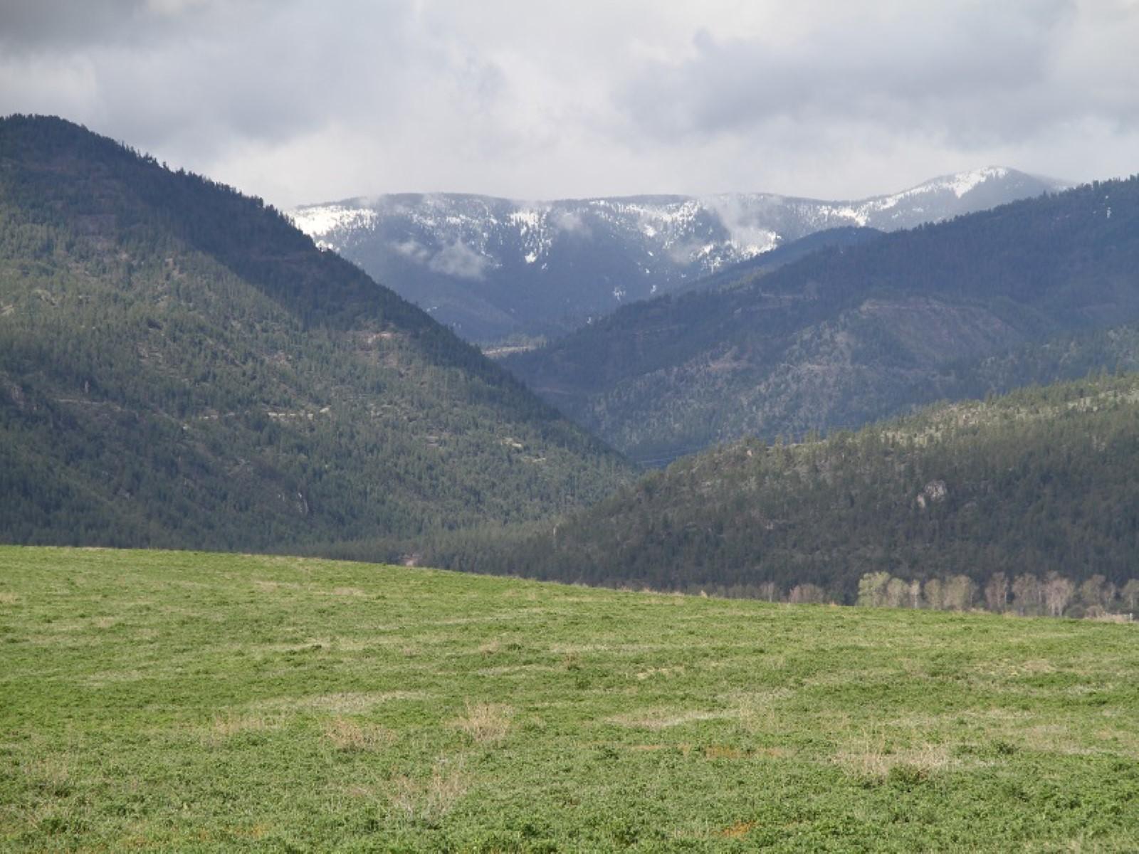 Farm / Ranch / Plantation for Sale at 11330 Mocassin Lane Missoula, Montana, 59802 United States