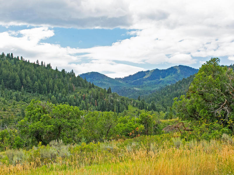 Land for Sale at An Inspiring Landscape for the Exceptional Home 8698 Parley's Ln Lot#40 Park City, Utah 84098 United States