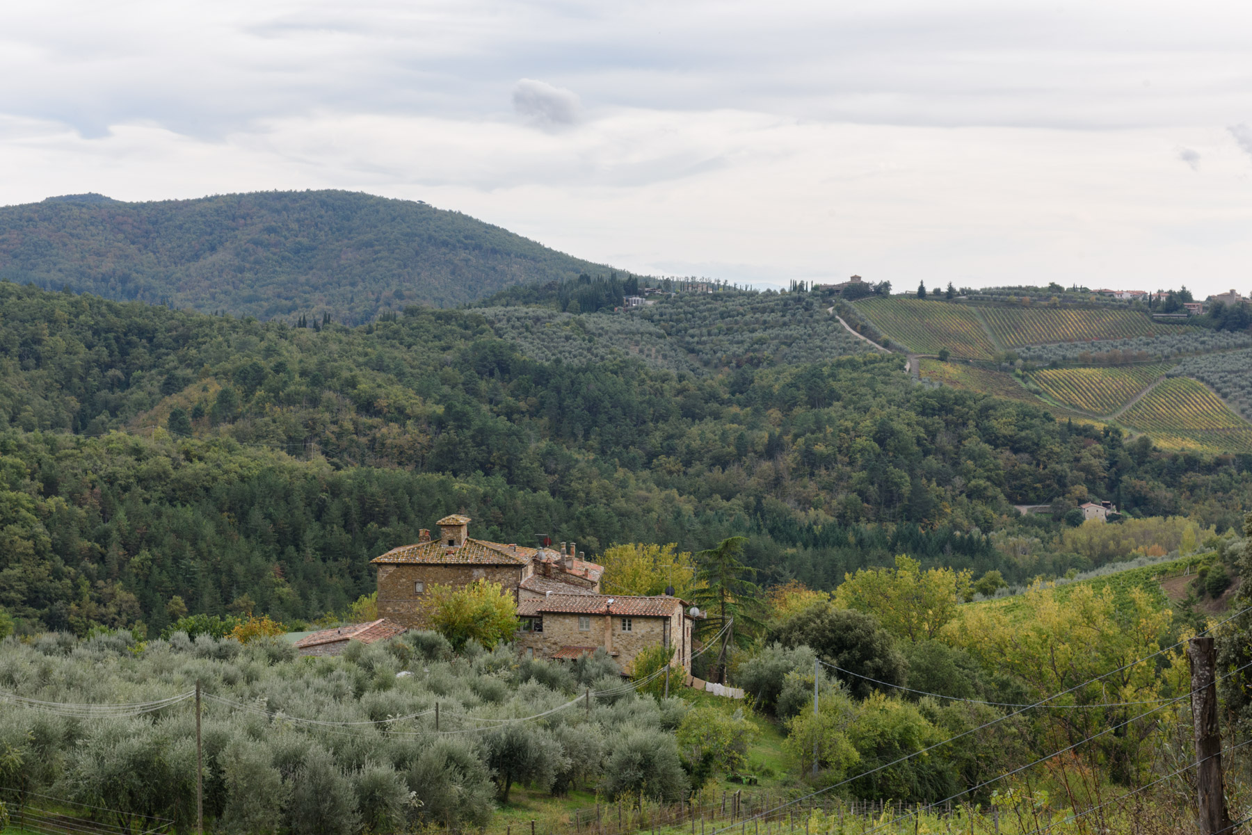 Einfamilienhaus für Verkauf beim Detached beautiful country house amongst the olive groves Loc. Bricciano Gaiole In Chianti, Siena 53013 Italien