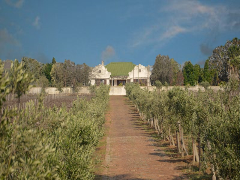 Property Of A touch of Tuscany in the Cape Winelands