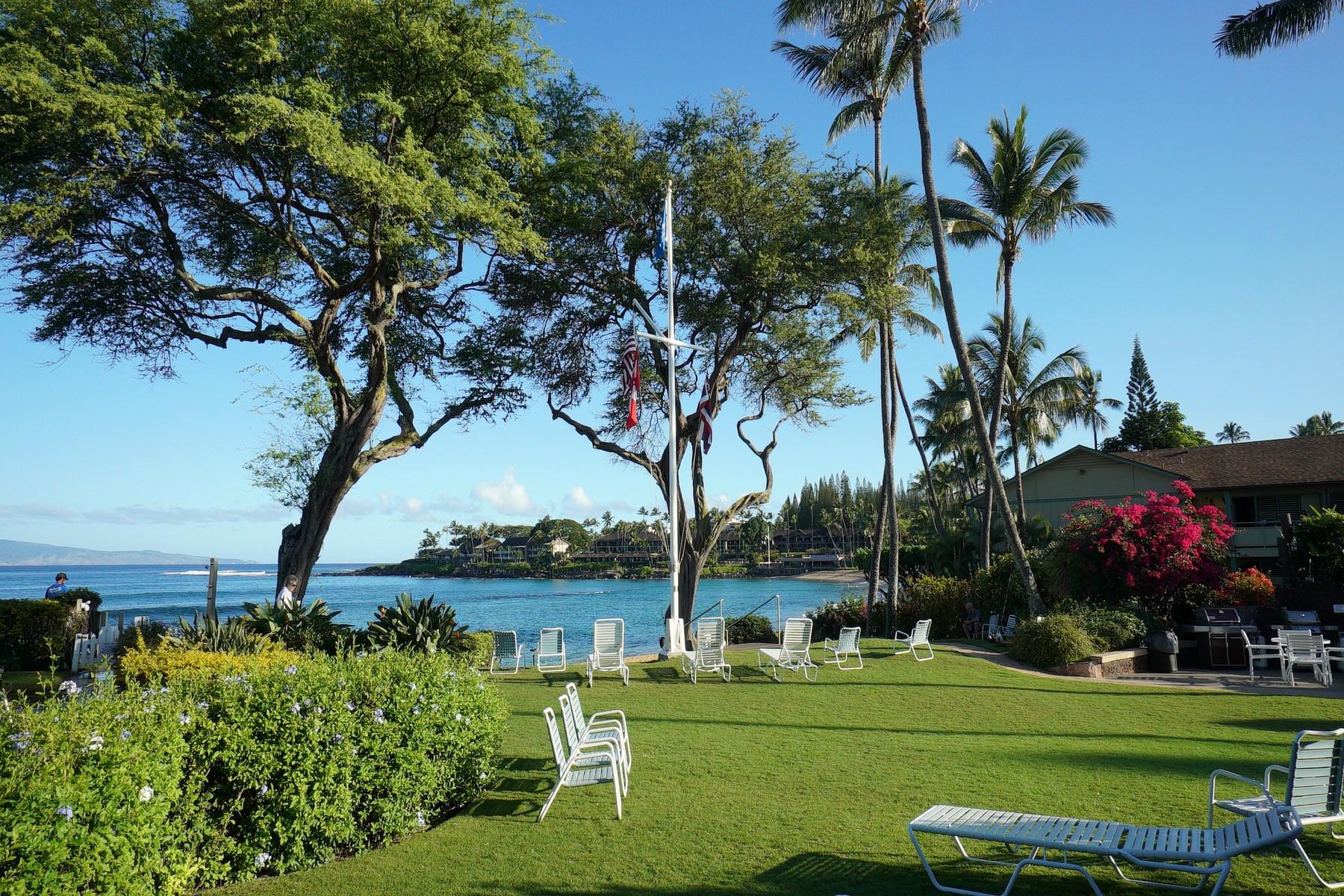 コンドミニアム のために 売買 アット Slice of Paradise, Napili Surf 50 Napili Place, Napili Surf 218 Lahaina, ハワイ, 96761 アメリカ合衆国