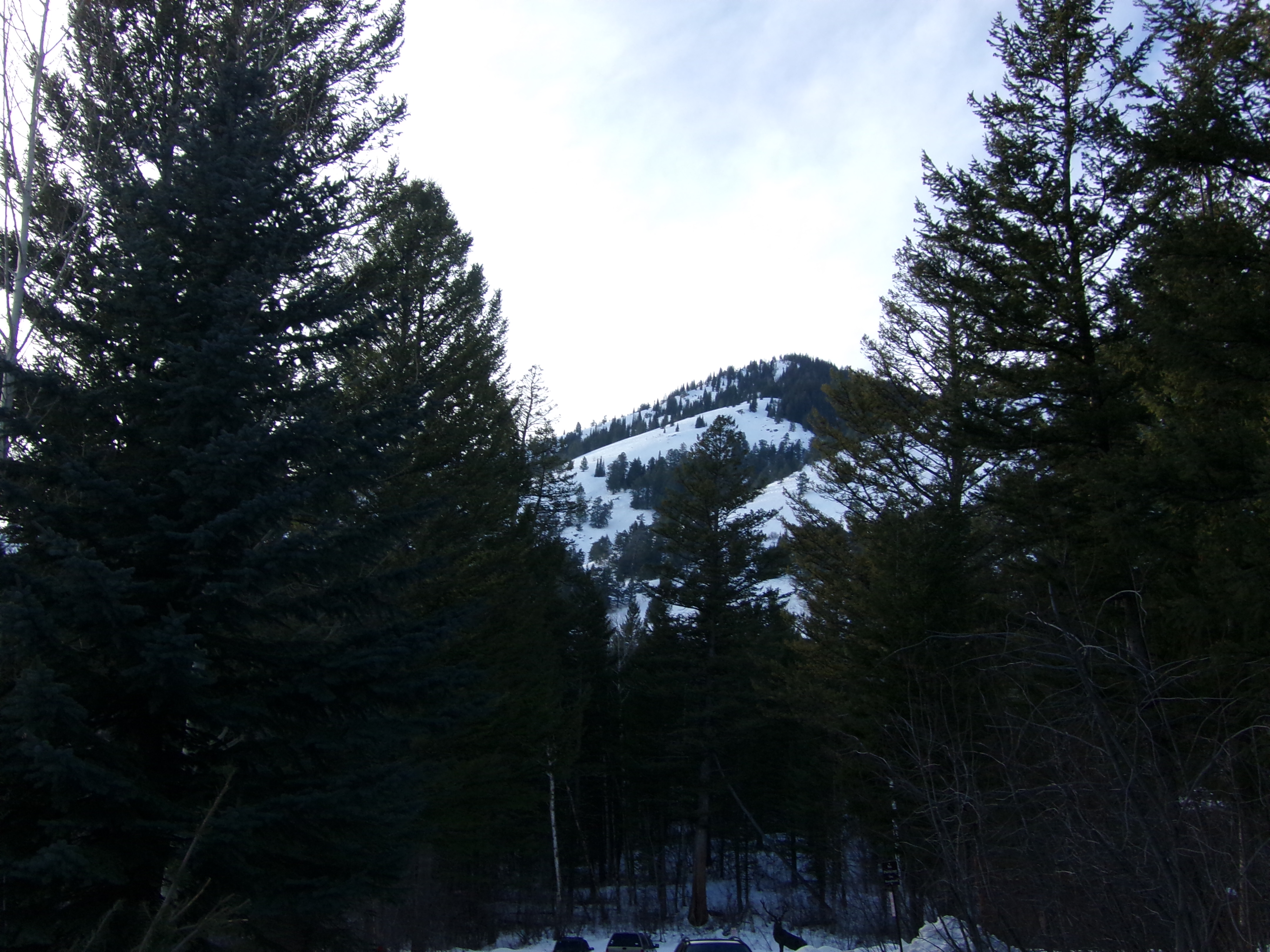 Земля для того Продажа на Wooded Lot in Teton Village 3750 West Morley Drive, Lot 142 Teton Village, Вайоминг 83025 Соединенные Штаты