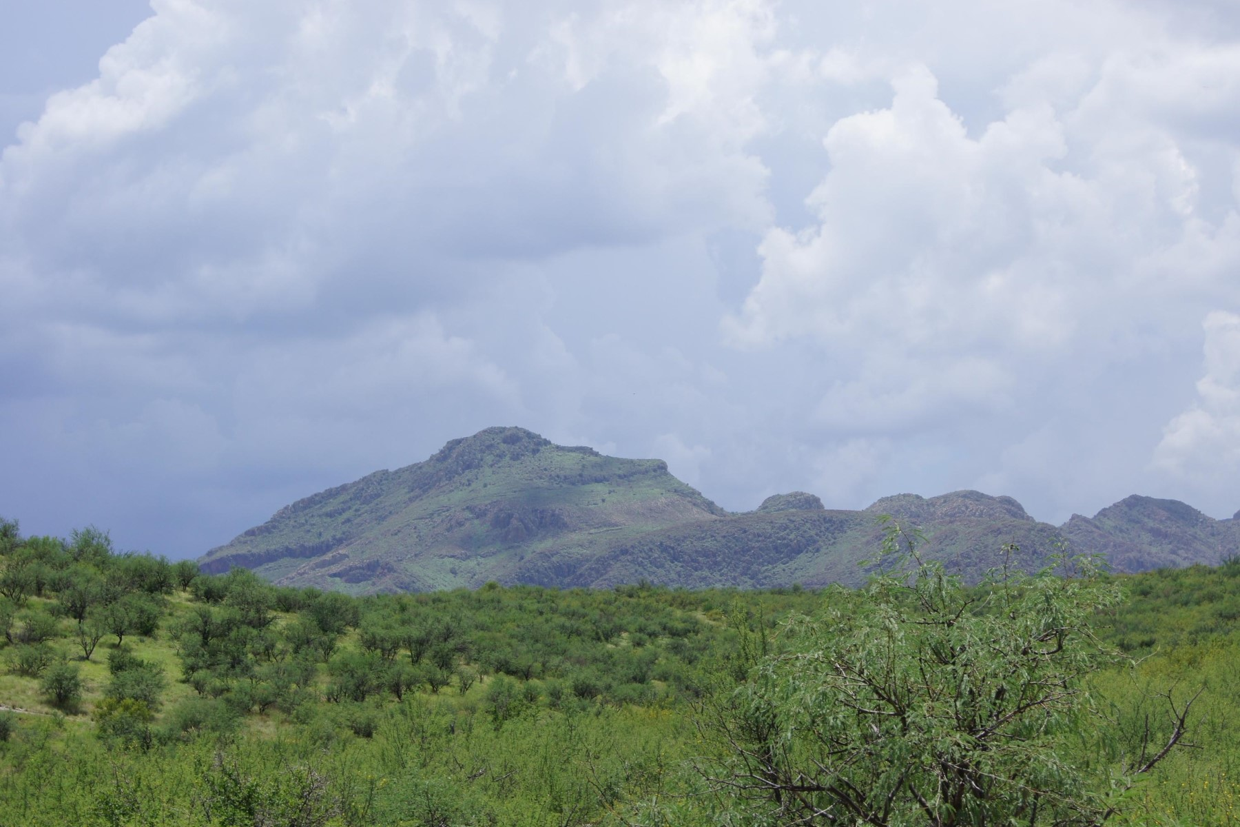 Land for Sale at Beautiful panoramic views from this 4.35 acre parce Parcel 4 Vista de Torres 4 Tubac, Arizona, 85646 United States