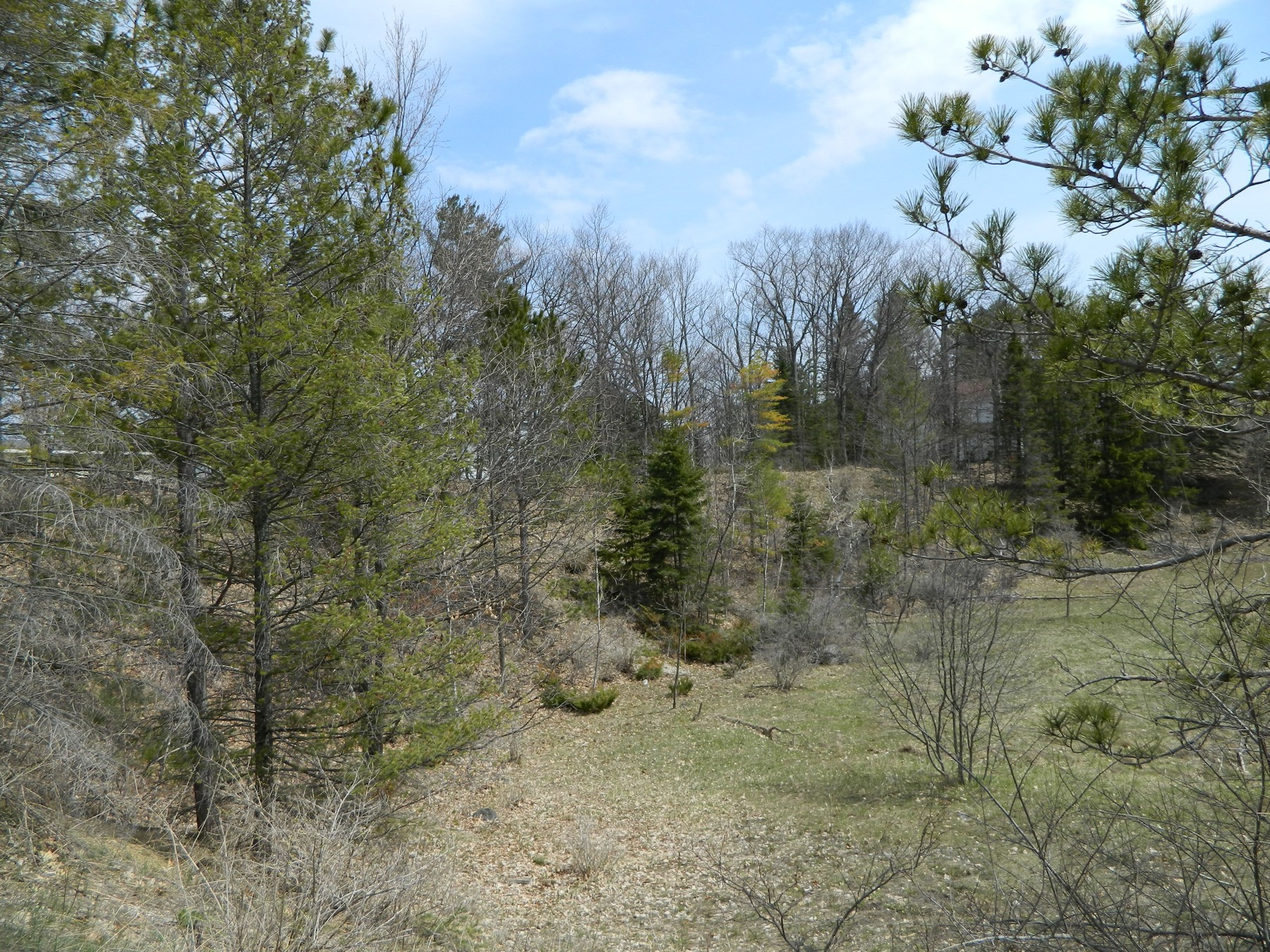 Land for Sale at Summit Street Land Harbor Springs, Michigan, 49740 United States