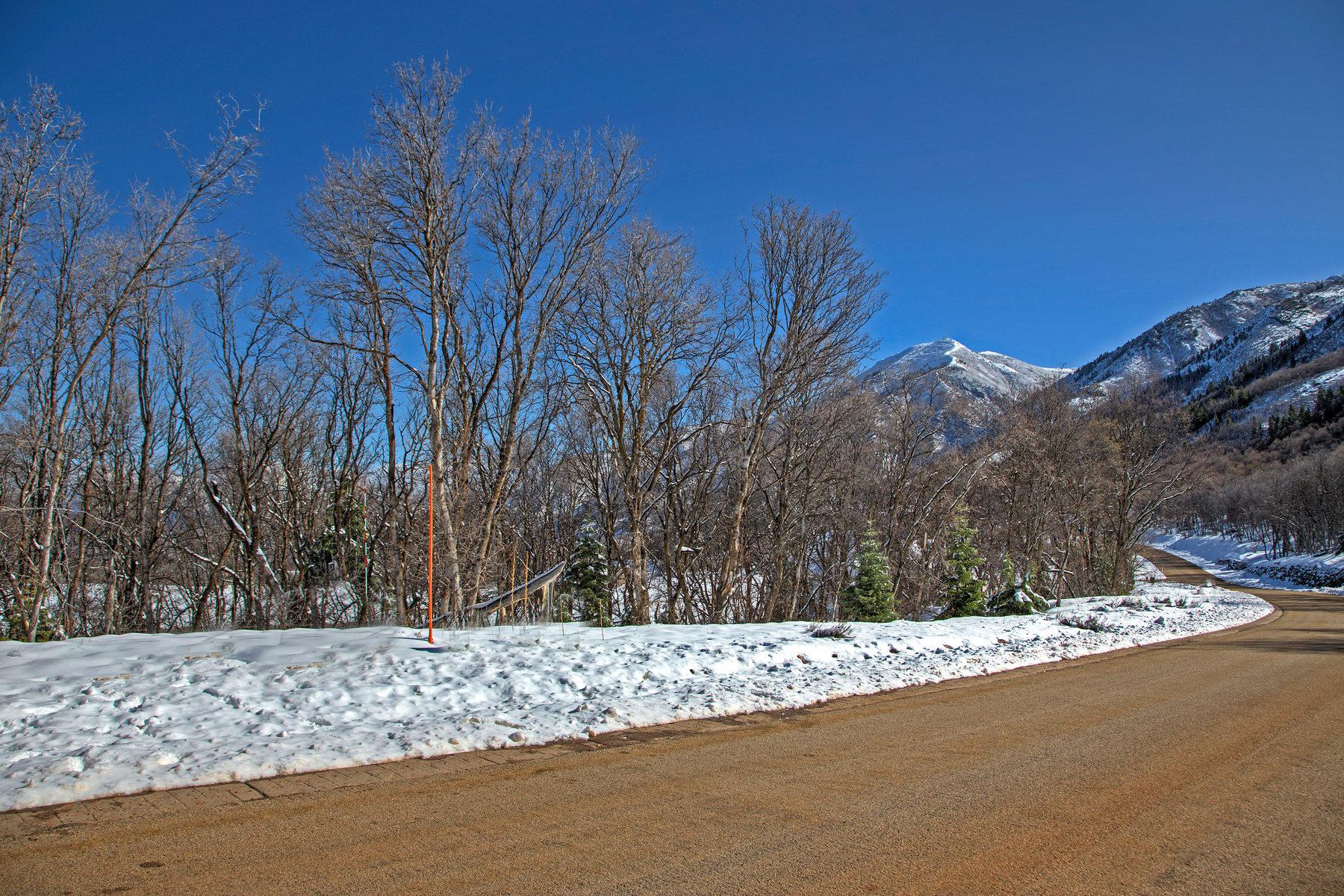 Terreno per Vendita alle ore Perfect for a Walkout Basement 1225 S Eagle Nest Lot 77 Woodland Hills, Utah, 84653 Stati Uniti
