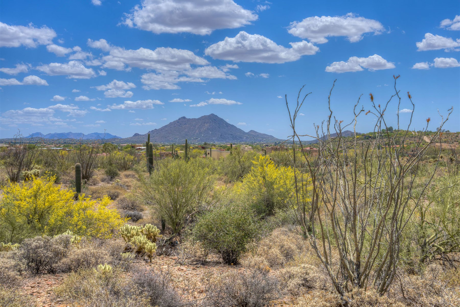 sales property at Spectacular Estate Lot in the Shadow of Elephant Butte