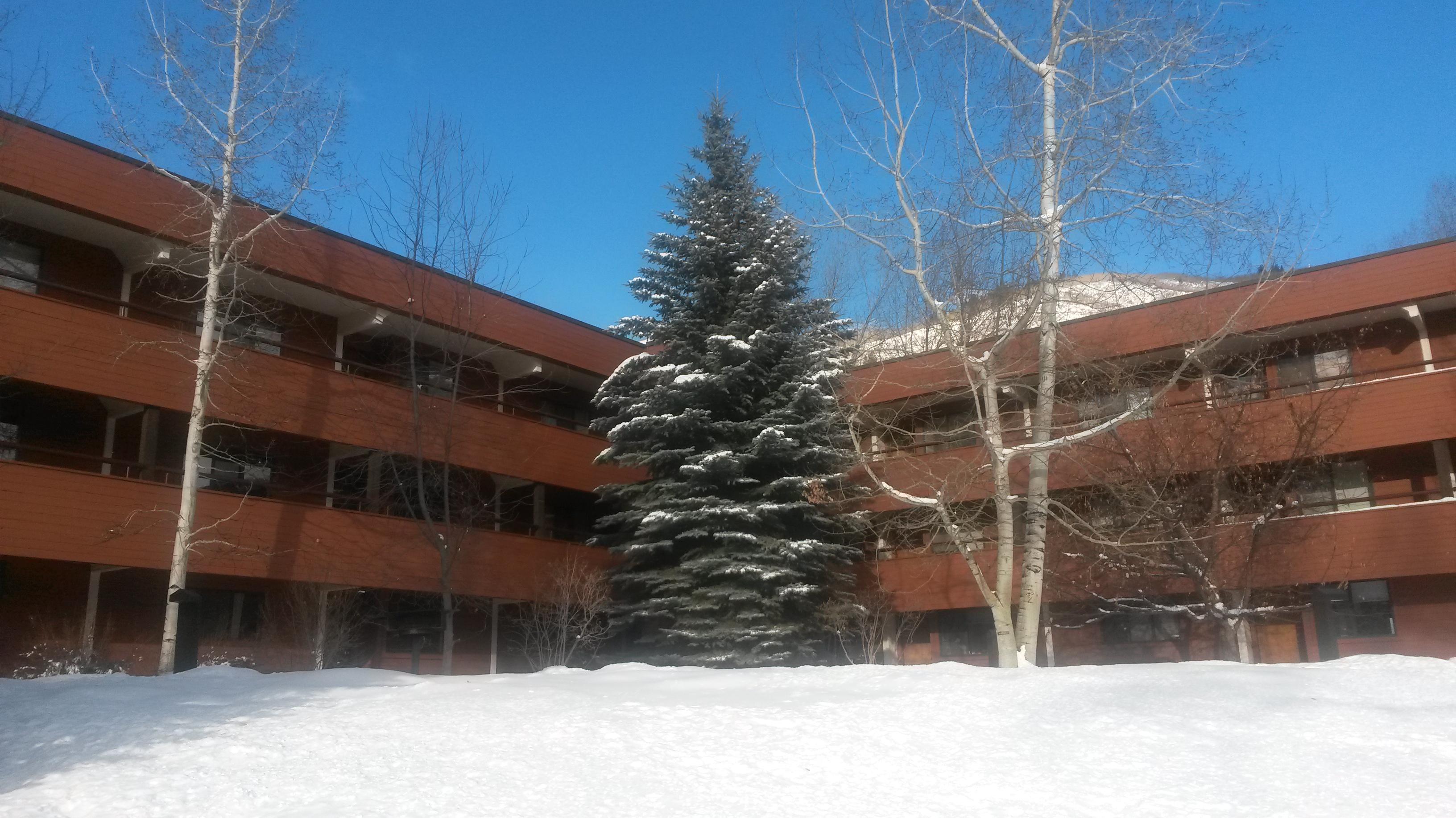 Copropriété pour l Vente à Affordable Aspen Studio With Views 1324 Vine Street Aspen, Colorado 81611 États-Unis