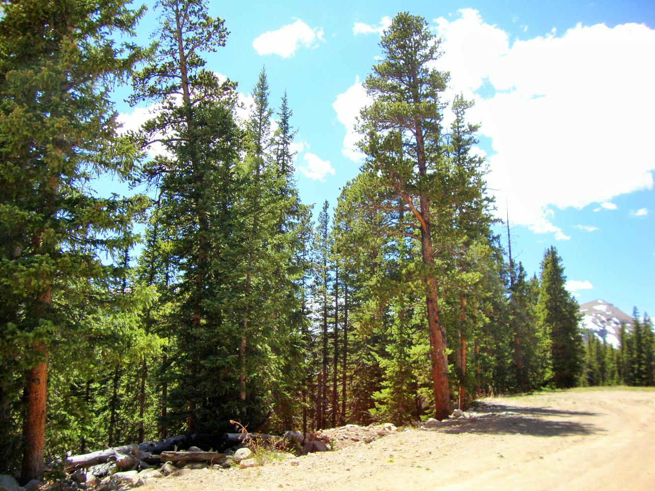 Terreno para Venda às Private Homesite on 2 Acres 0 Gold Trail, Lot 1181 Fairplay, Colorado, 80440 Estados Unidos