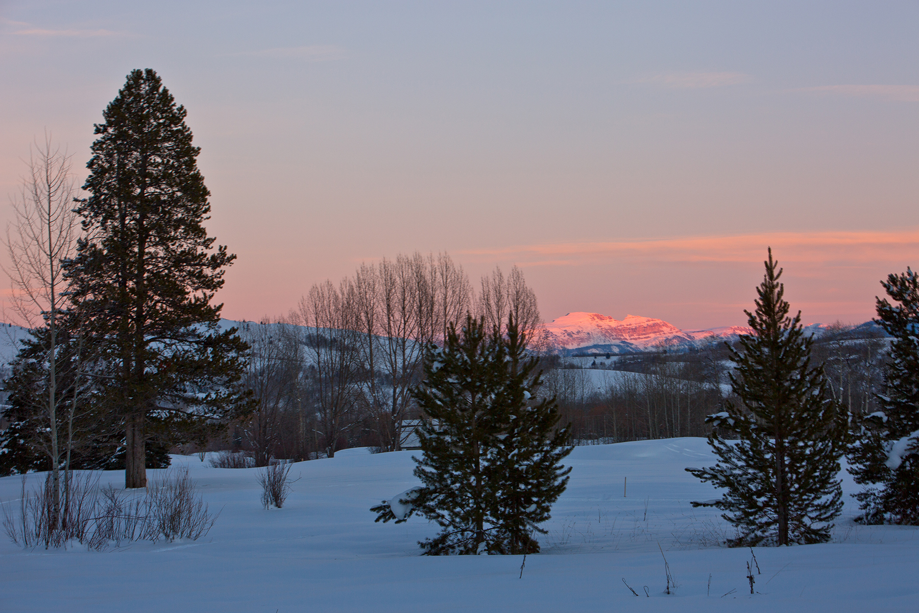 Terrain pour l Vente à Estate Lot in Teton Pines 2756 N Teton Pines Drive Wilson, Wyoming, 83014 États-Unis
