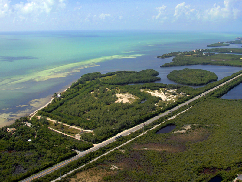 Terrain pour l Vente à Private Beach Acreage in the Florida Keys 57290 Overseas Highway Marathon, Florida, 33050 États-Unis