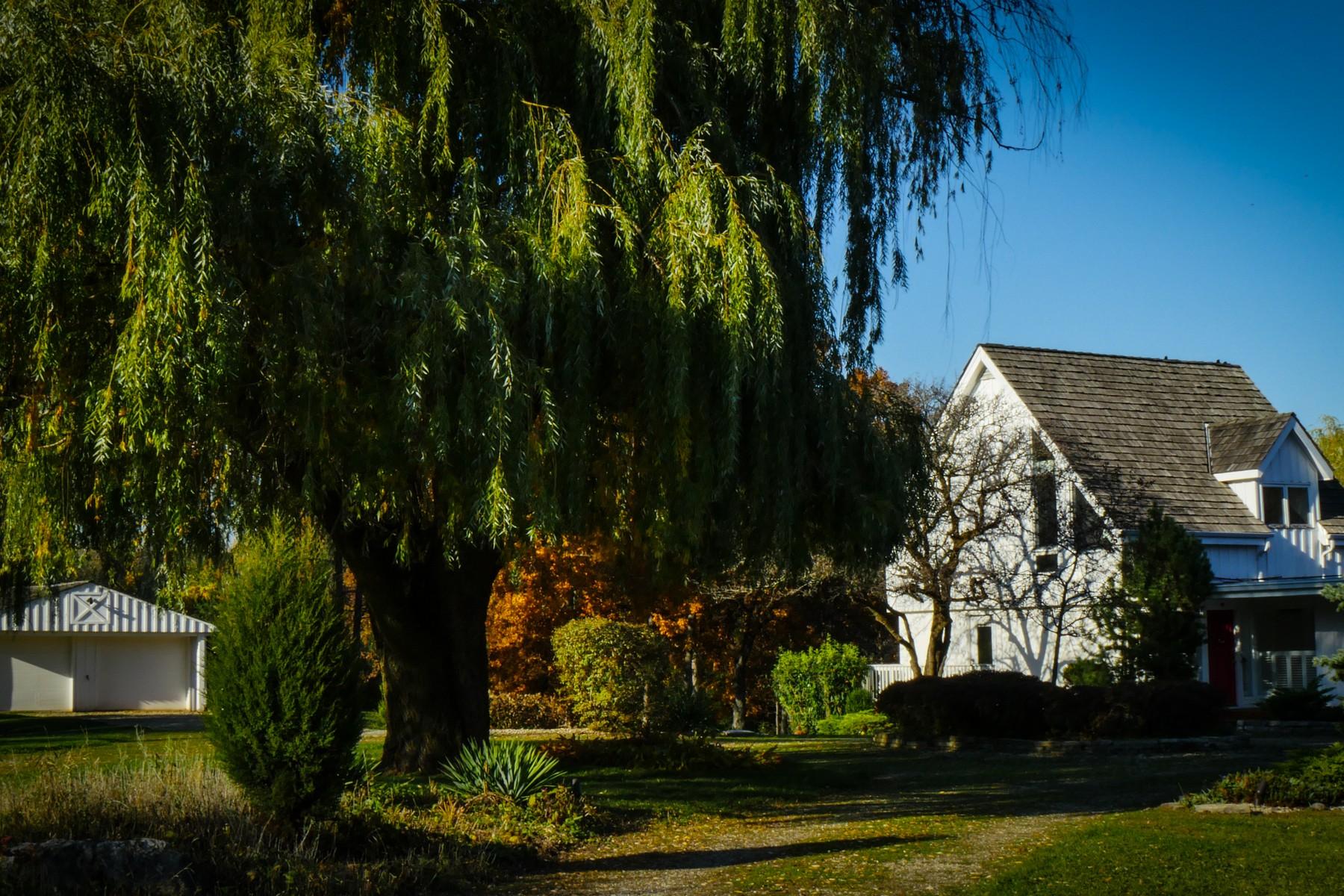 Частный односемейный дом для того Продажа на Waterfront Living 48 Otis Road Barrington Hills, Иллинойс, 60010 Соединенные Штаты