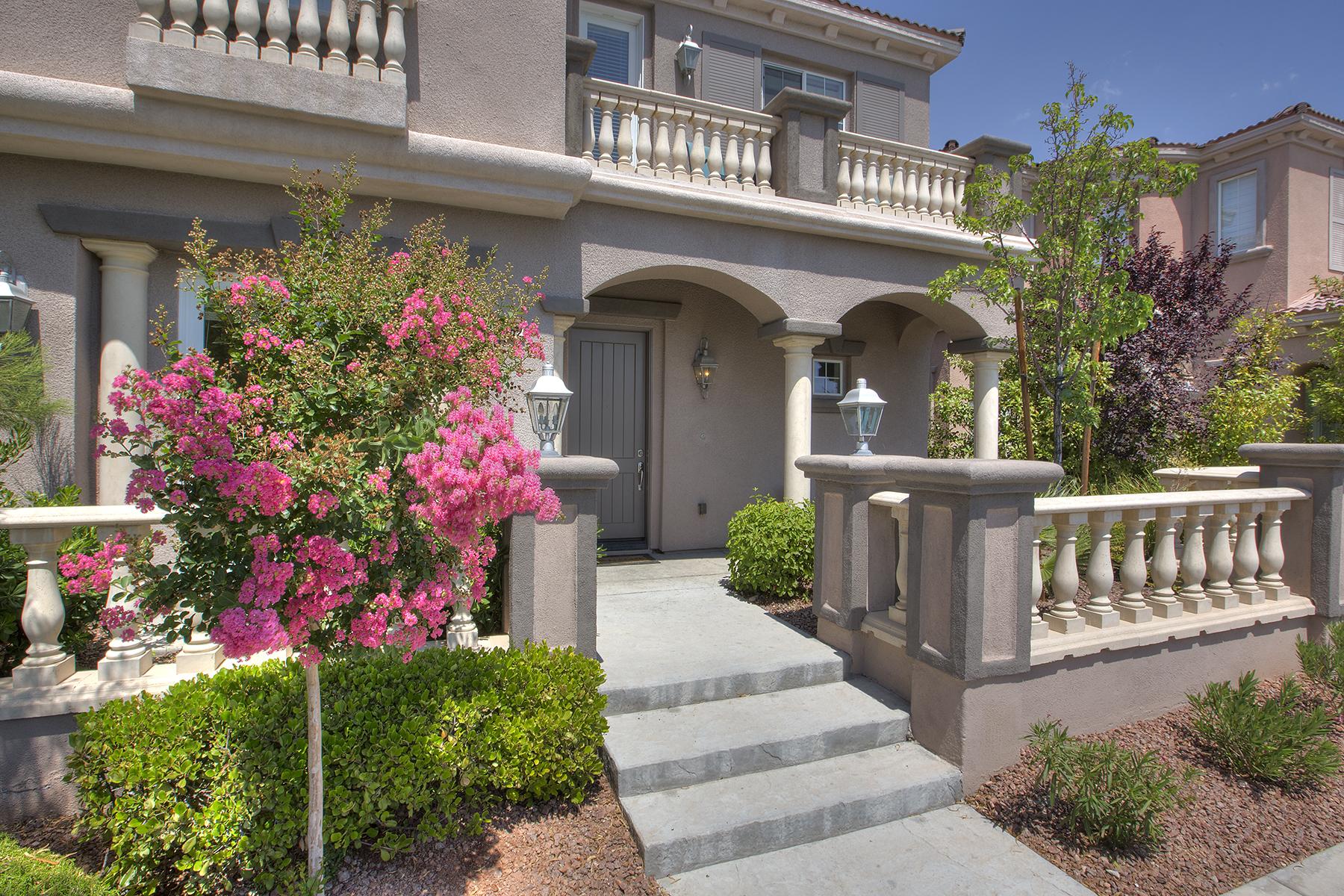 Maison unifamiliale pour l Vente à 11362 Merado Peak Dr Las Vegas, Nevada, 89135 États-Unis