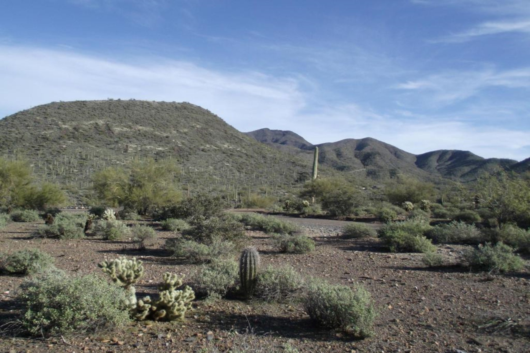 sales property at Exceptional views from this nearly 5 acre pristine property.