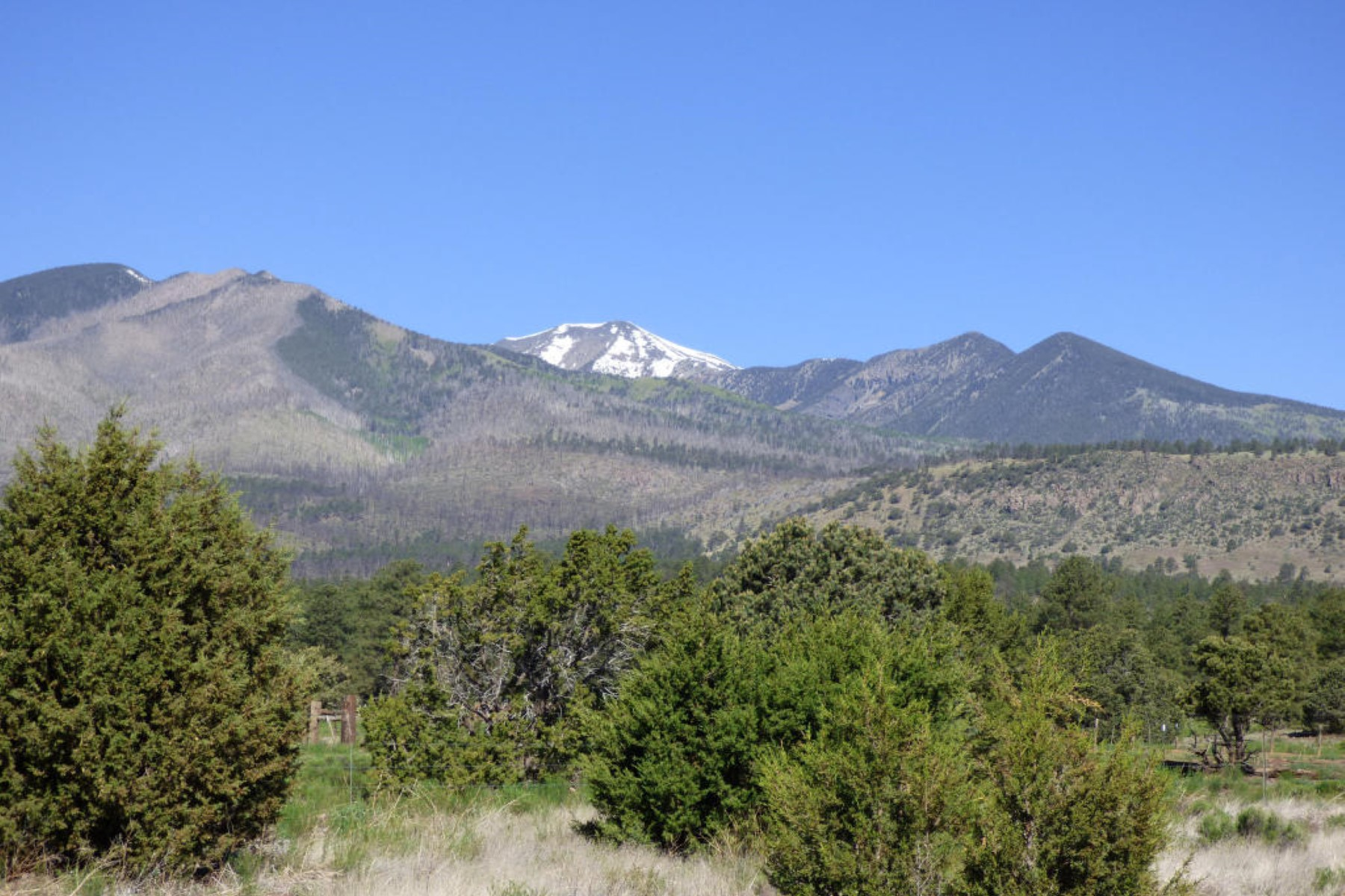 Land for Sale at This is the remaining part of the original ''Brandis Homestead'' land. 5290 E Pumpkin Patch RD Flagstaff, Arizona 86004 United States