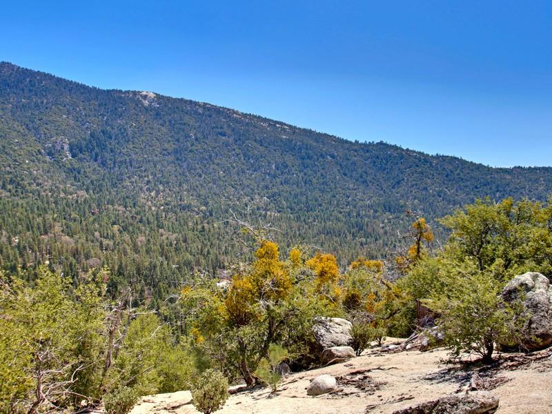 Land for Sale at Chipmunk Vacant Land 0 Chipmunk Idyllwild, California 92649 United States