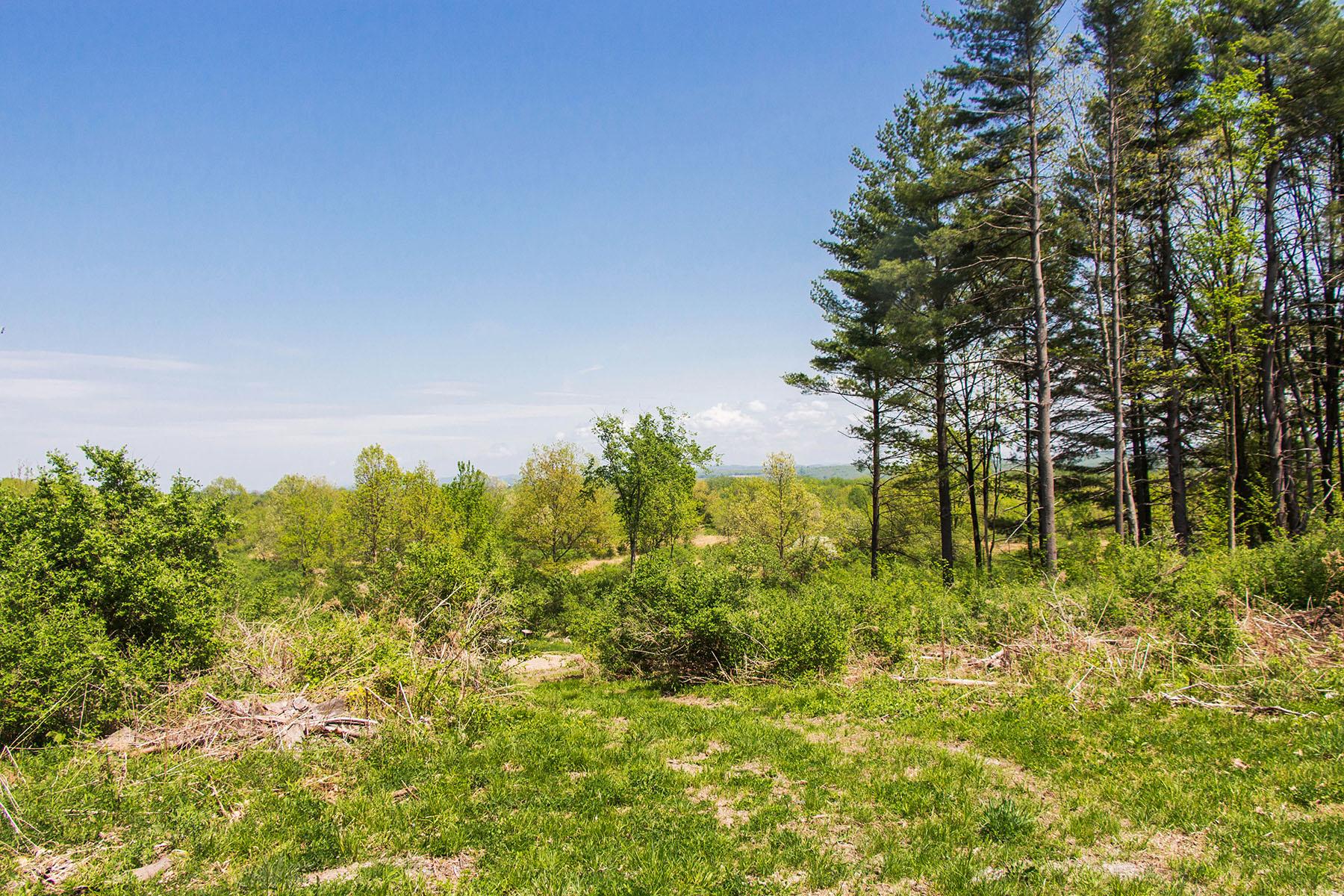 Đất đai vì Bán tại Property with Views 392 Mott Road Gansevoort, New York 12831 Hoa Kỳ