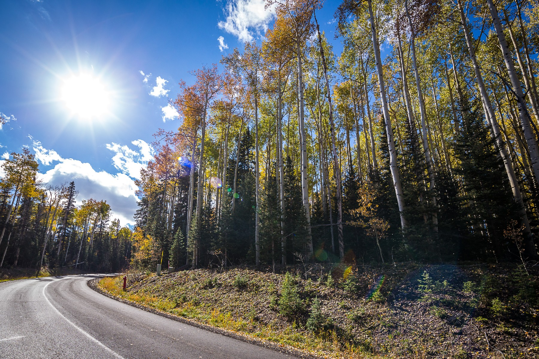 Land for Sale at Lot 325 Benchmark Drive TBD Benchmark Drive Mountain Village, Telluride, Colorado 81435 United States