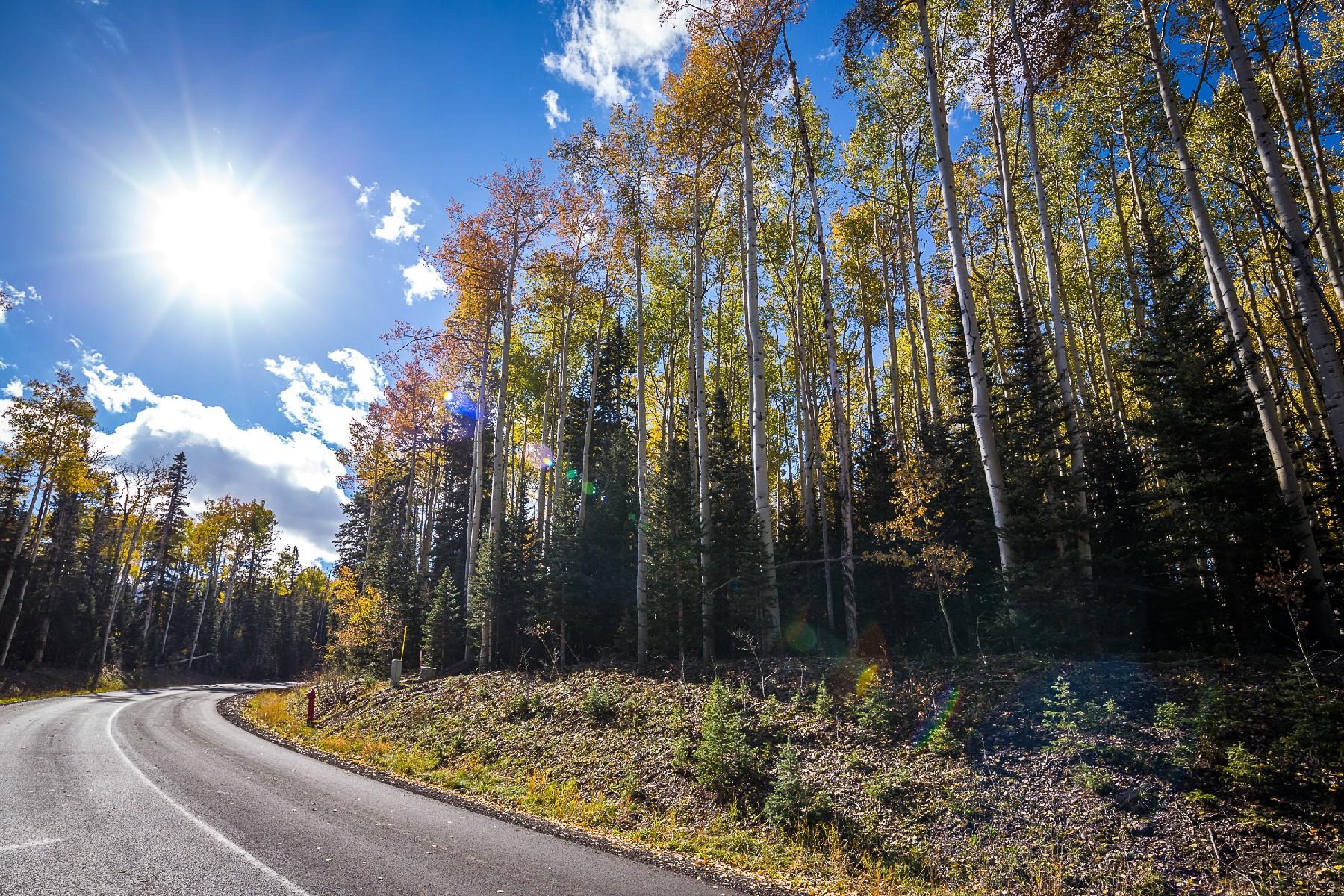 土地 のために 売買 アット Lot 325 Benchmark Drive TBD Benchmark Drive Mountain Village, Telluride, コロラド, 81435 アメリカ合衆国