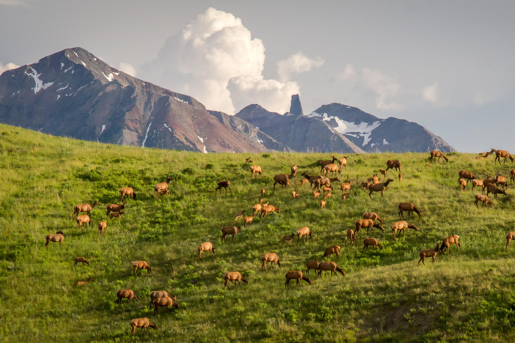 Land für Verkauf beim TBD Last Dollar Road 2, Diamond Ridge Telluride, Colorado 81435 Vereinigte Staaten