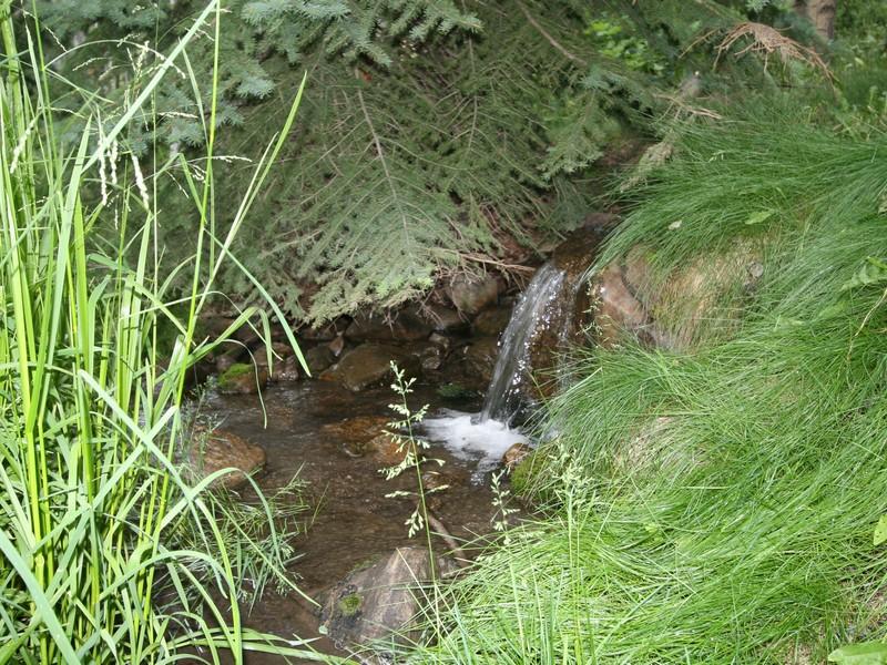 Property Of Creeks G