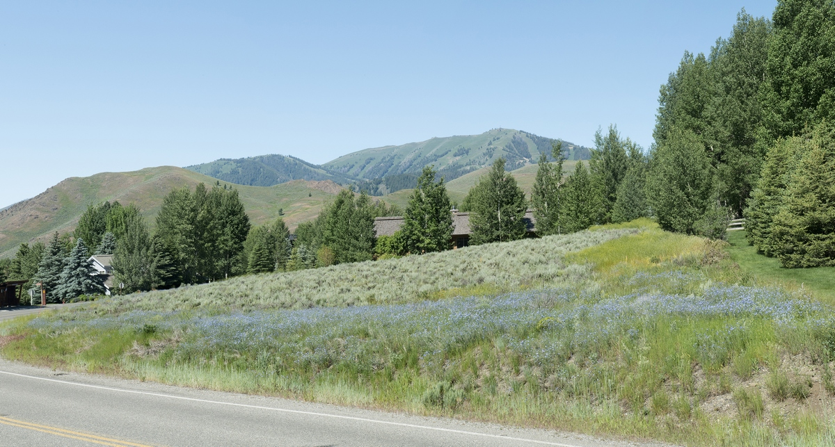 Land for Sale at Elkhorn Land Priced Right 305 Morning Star Rd Elkhorn, Sun Valley, Idaho, 83353 United States